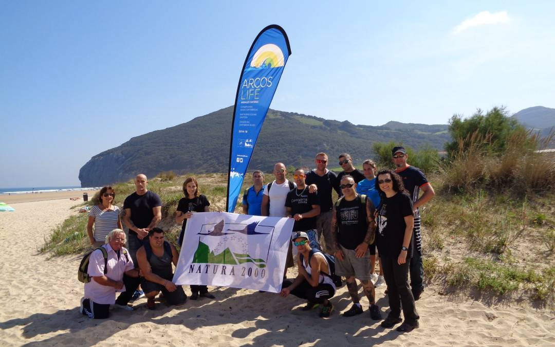 Dune restoration by collecting waste, invasive plants, seeds and by planting sea daffodil on Berria beach (SCI Santoña, Victoria and Joyel Marshes)