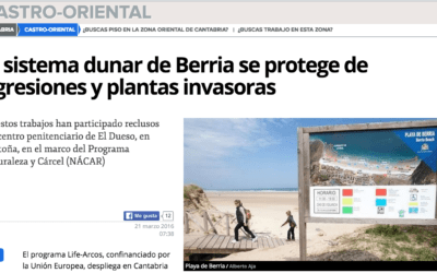 The Berria dune system is protected against attacks and invasive plants