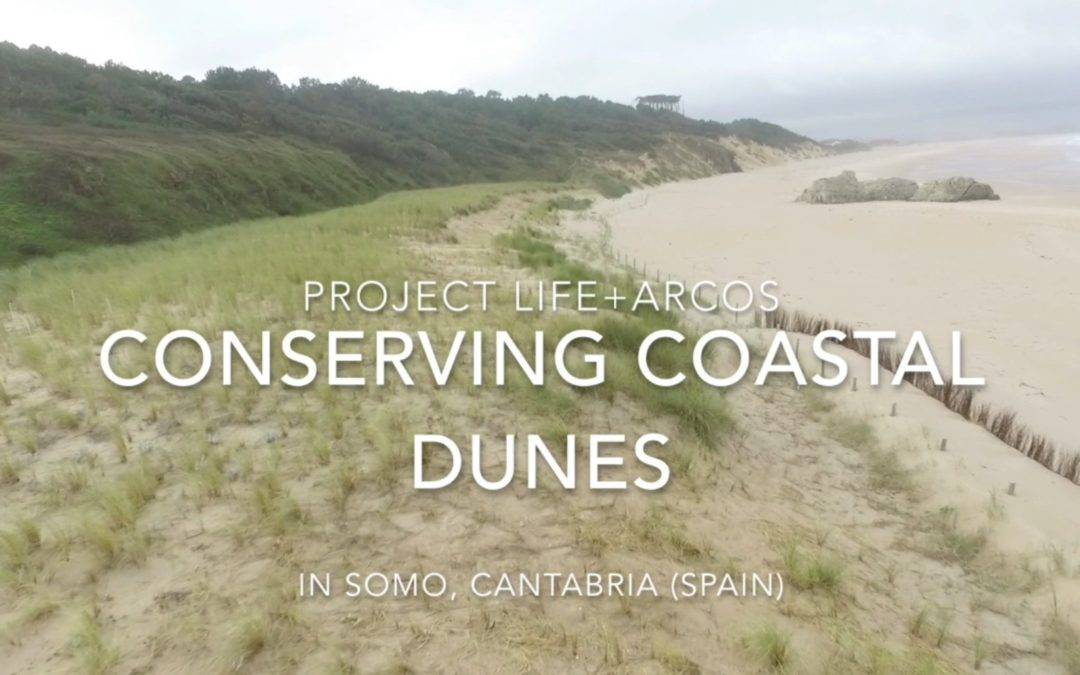 Somo dunes (Cantabria) exhibits a good conservation status after several years of conservation actions developed by Life+ARCOS