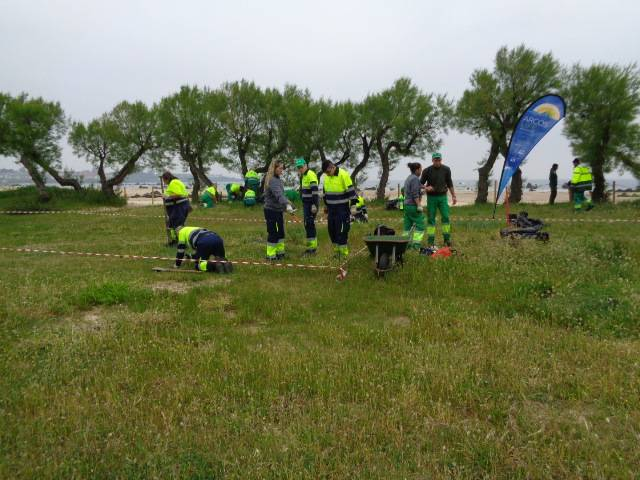 Chronicle #2: Celebrating Natura 2000 day. Removing capeweed plants from Helgueras (Noja)