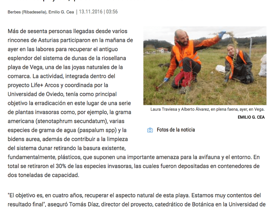 """""""The Ribadesella Beach of Vega, cleared of a third of invasive plants"""""""