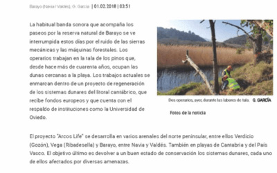 """Felling for biodiversity in Barayo"""