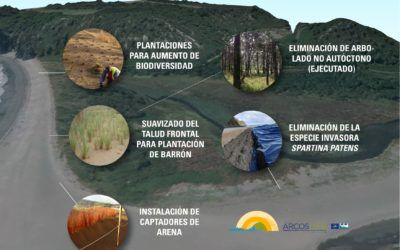 Actions taking place on the Barayo dune system (Navia-Valdés)