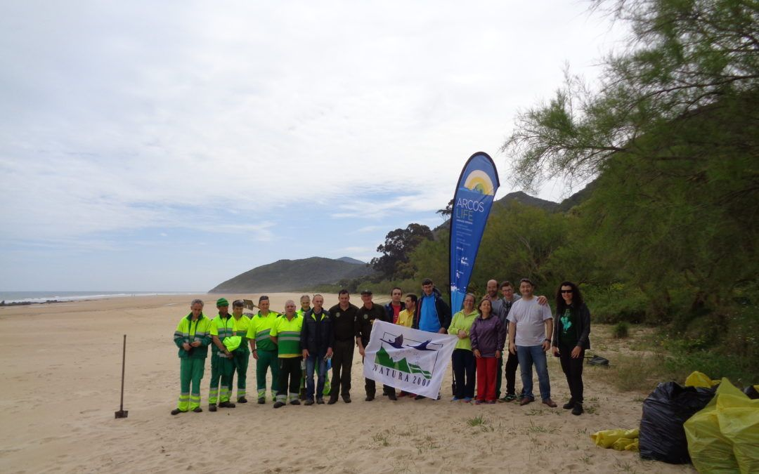 Ice plant extraction on Helgueras beach (Noja, Cantabria) and training with the AMICA, SERCA and AMPROS teams